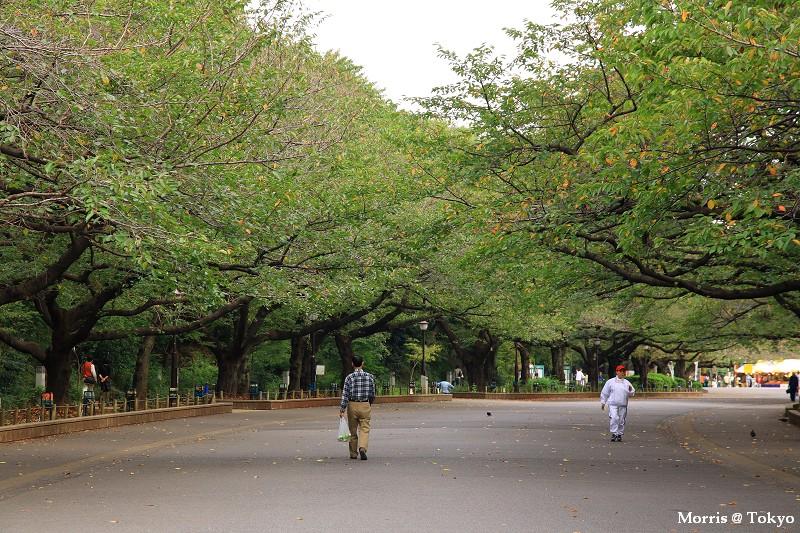 上野公園 (12).JPG