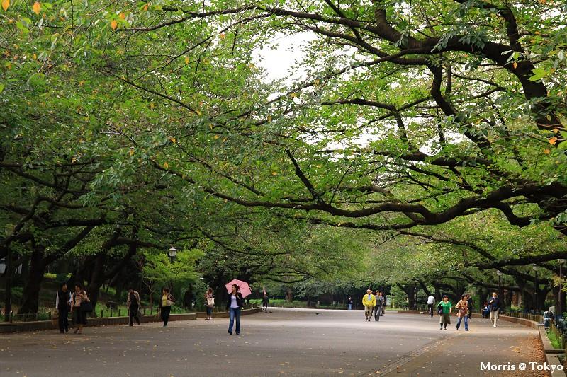 上野公園 (15).JPG