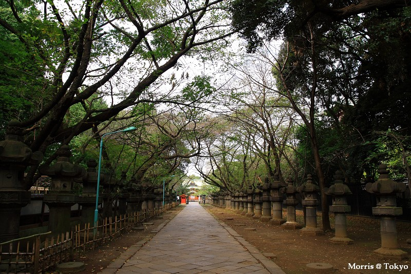 上野公園 (22).JPG
