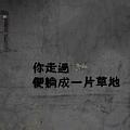 細雨‧青田街.JPG
