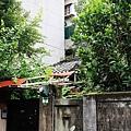細雨‧青田街 (15).JPG