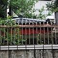 細雨‧青田街 (17).JPG