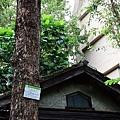 細雨‧青田街 (56).JPG