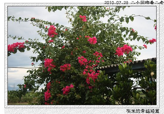 nEO_IMG_IMG_0585.jpg