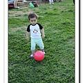 nEO_IMG_IMG_0293.jpg
