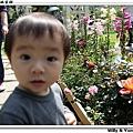 nEO_IMG_IMG_0311.jpg