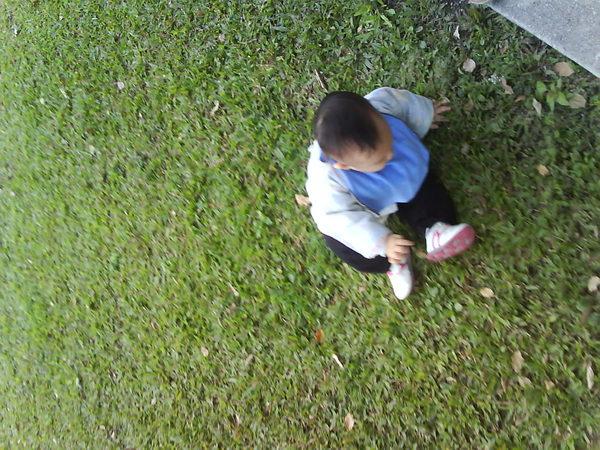 一屁股坐在草地上