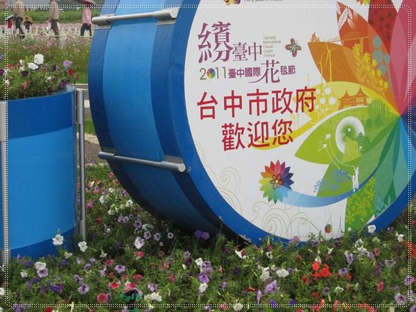 100-11-19新社花海27.JPG