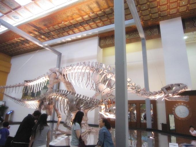 最古老的恐龍展09