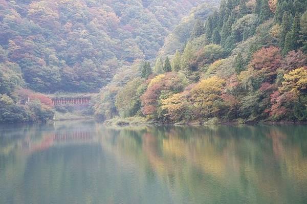 101年11月日本旅遊 (50)