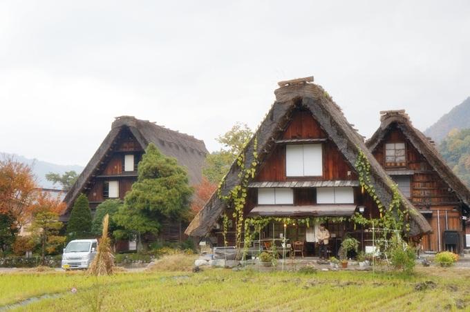 101年11月日本旅遊 (135)