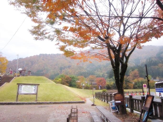 101年11月日本旅遊 (206)