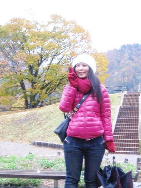101年11月日本旅遊 (208)