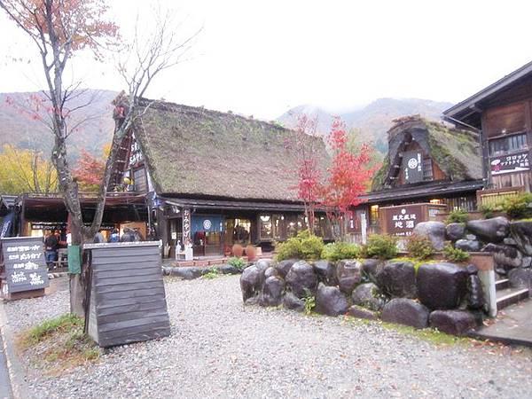 101年11月日本旅遊 (212)