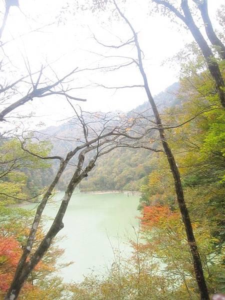 101年11月日本旅遊 (381)