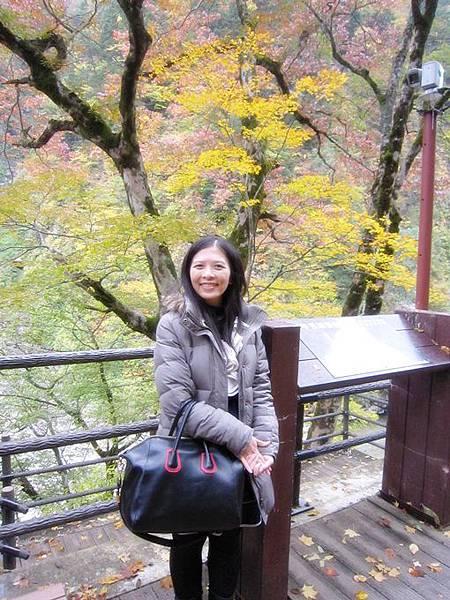 101年11月日本旅遊 (411)