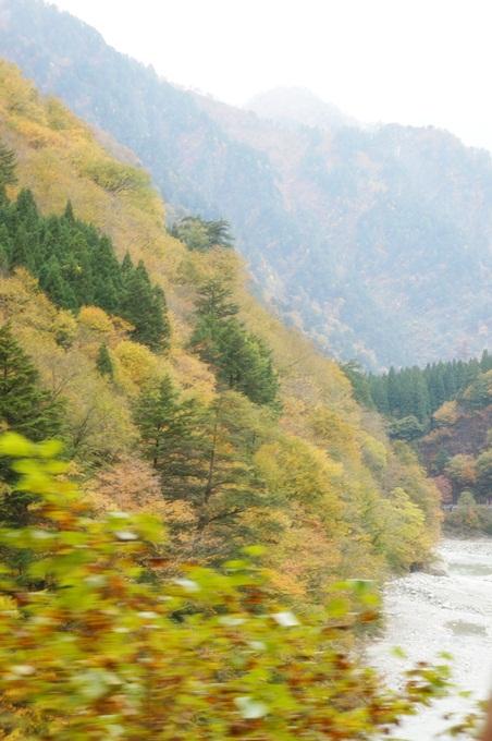 101年11月日本旅遊 (425)