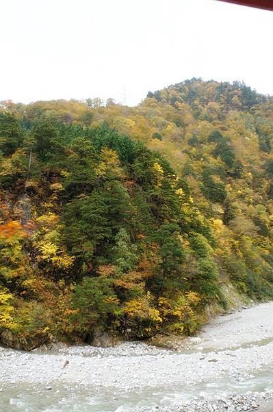 101年11月日本旅遊 (426)