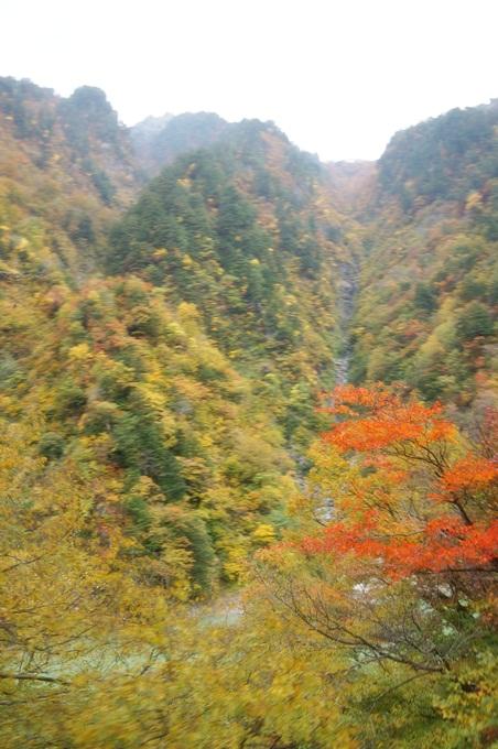 101年11月日本旅遊 (441)