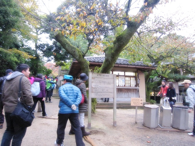 101年11月日本旅遊 (519)