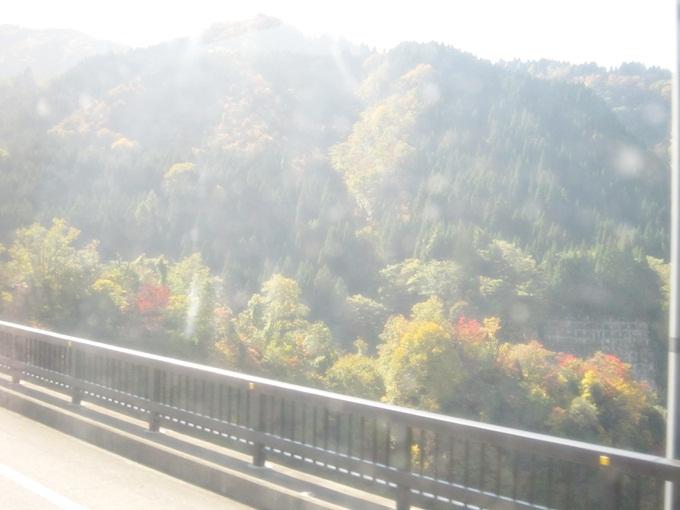 101年11月日本旅遊 (682)