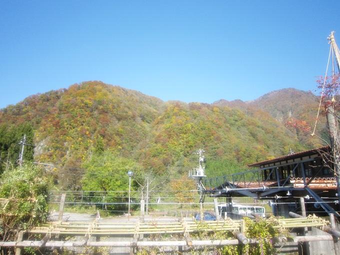 101年11月日本旅遊 (686)