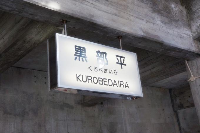 101年11月日本旅遊 (921)