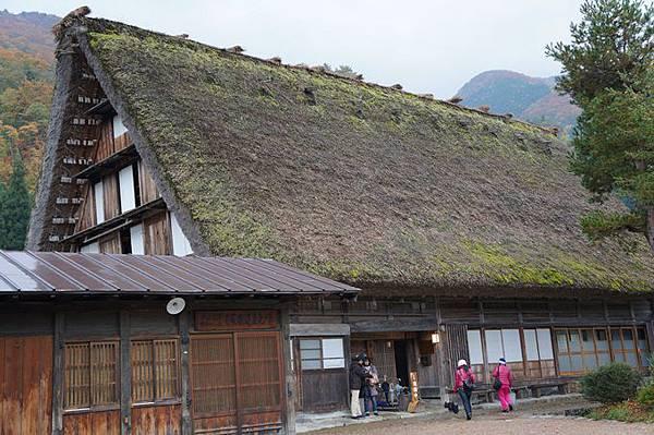 101年11月日本旅遊 (153)