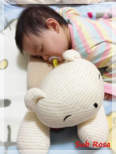 小熊趴趴枕(13).jpg