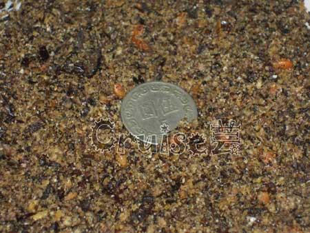 西班牙LINDO甲殼素營養蛋粉2