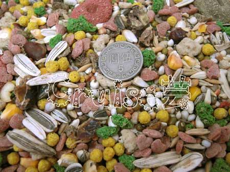 德國VITA-特殊美食中大型非洲2