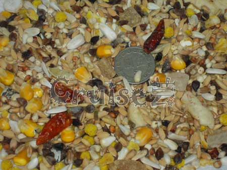 德國-Vitakraft-總匯美食--中大型鸚鵡熱帶水果餐1 (2)