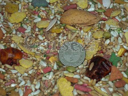 美國PRETTY BIRD漂亮鳥兒-中小型鸚鵡穀物飼料(無向日葵瓜子) (2)