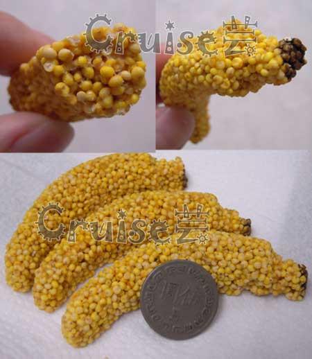 美國8in1小型鸚鵡香蕉造型點心 (2)