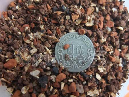合美健保濕型保健礦物飼料NO12-A礦晶2
