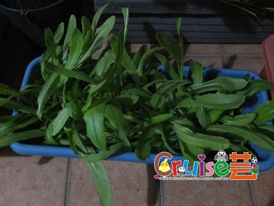 151126-A菜-(2).jpg