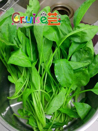 151230-菠菜-(3).jpg