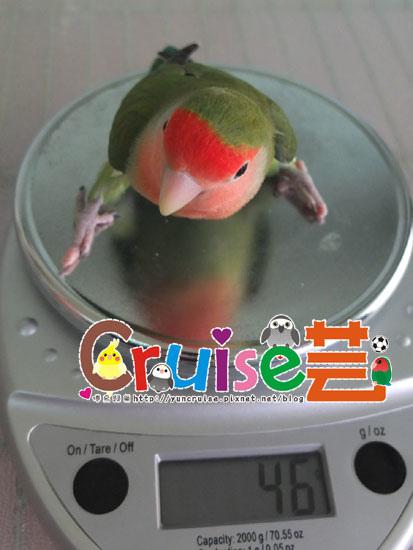 薄-(2)