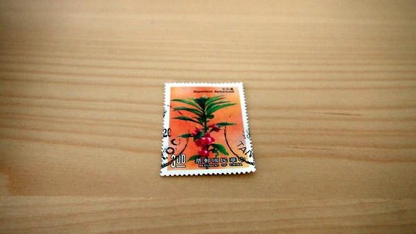 CIMG0135