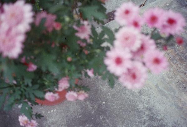 r001-053.jpg