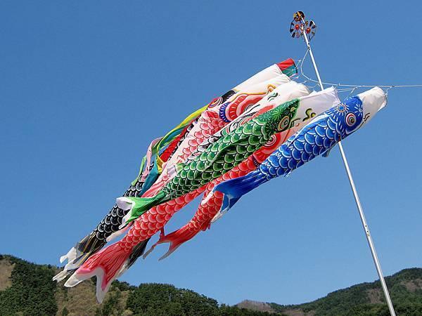 Koi-nobori,_Nagawa,_Nagano,_Japan_(3585057745).jpg