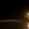 金山磺火捕魚