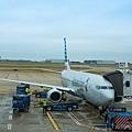 達拉斯(DFW)機場拍機