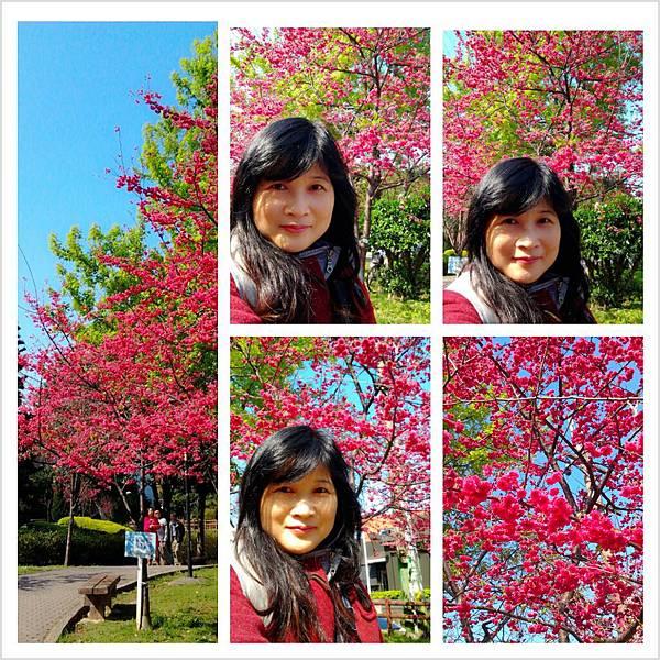 PhotoGrid_1360993767509.jpg