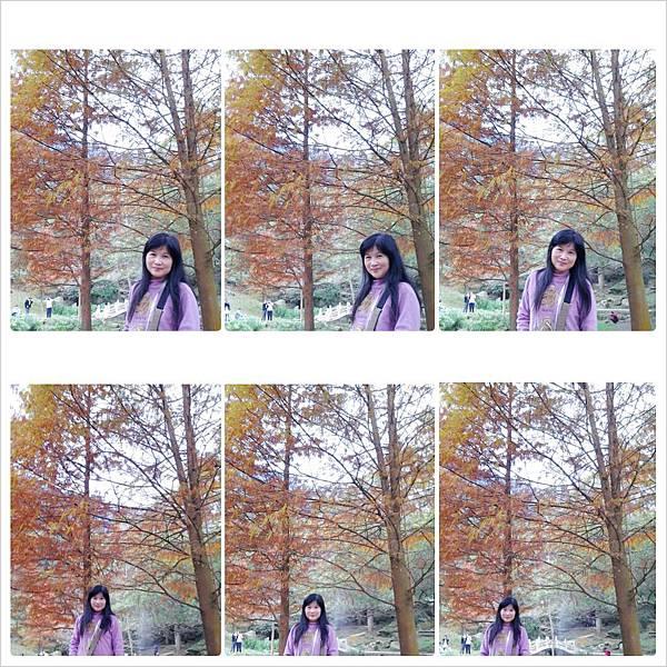 PhotoGrid_1386839059721.jpg