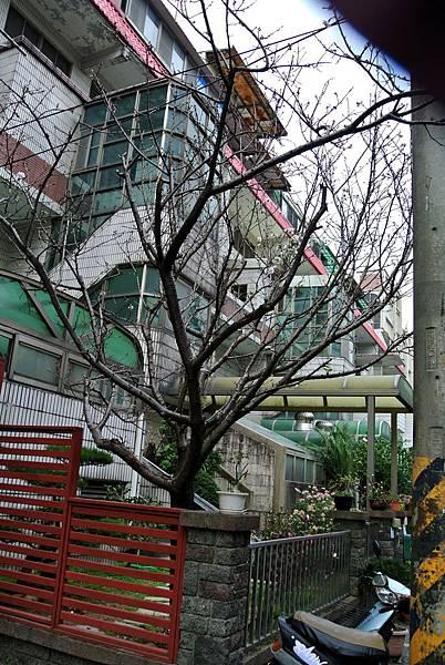 2014_0301CD.JPG