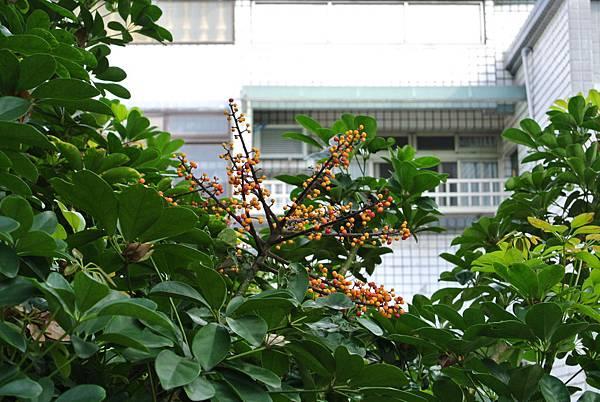 2014_0301BR.JPG