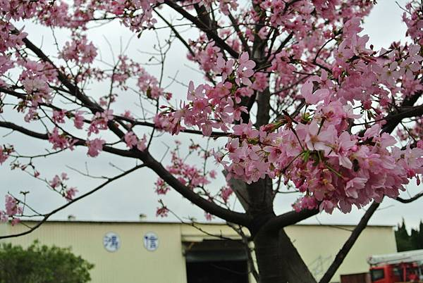 2014_0227BJ