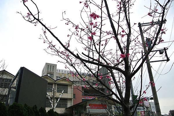 2014_0228BD.JPG