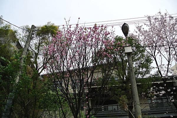 2014_0311BT.JPG